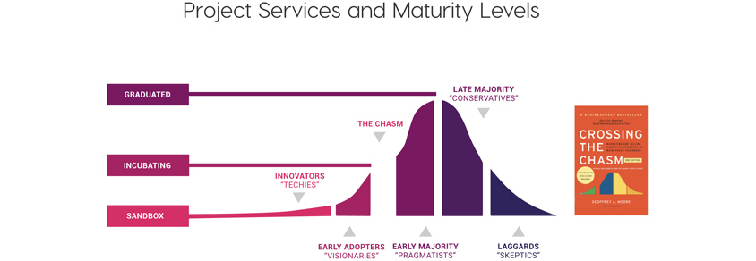 Project Services and Maturity Levels