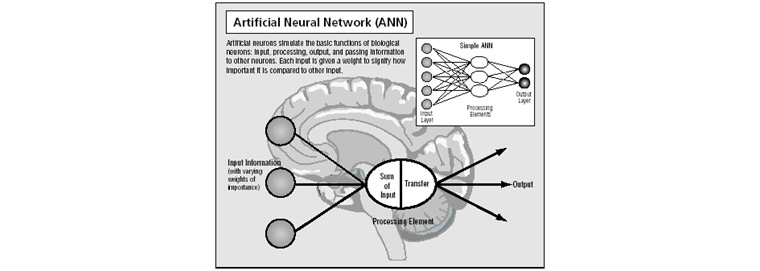 Artificial Neutral Network (Source: Science Clarified Website)