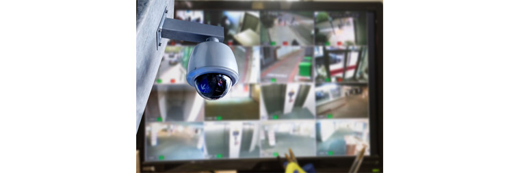 D-Net development for security by analyzing CCTV video