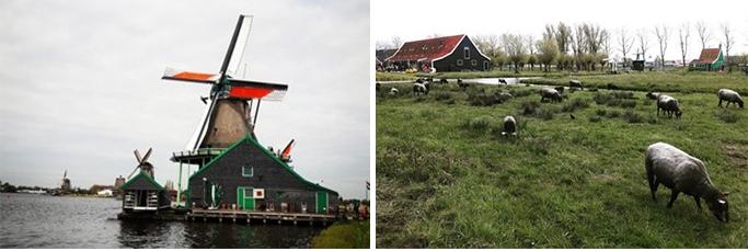 네덜란드 여행 사진 16
