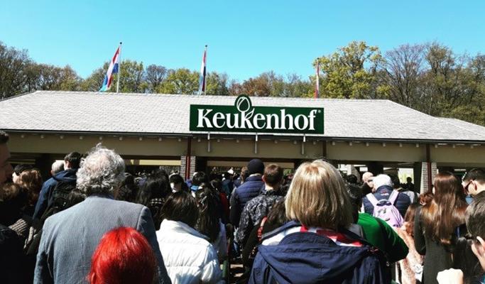 네덜란드 여행 사진 4