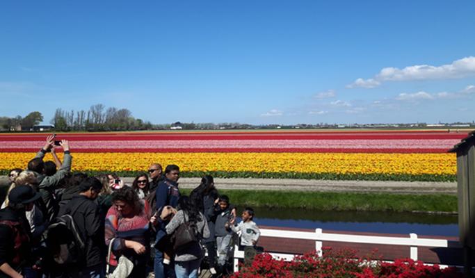 네덜란드 여행 사진 7