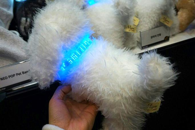 강아지 모형에 제품을 부착한 사진
