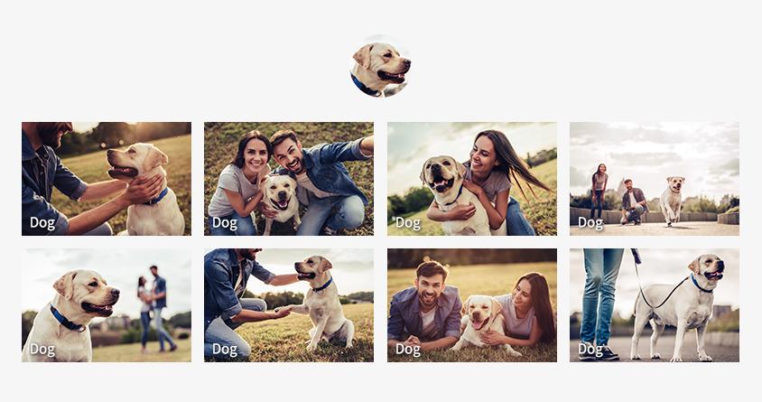구글 포토는 사진첩에 있는 인물별로 사진을 자동으로 분류해 검색할 수 있다