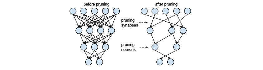 Pruning 이전과 이후의 Neural Network