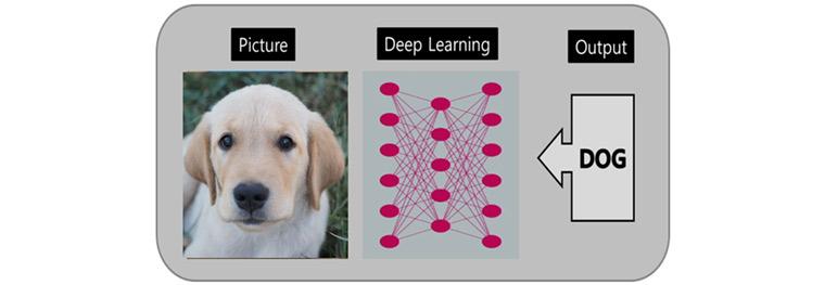 딥러닝을 활용한 강아지 분류: 딥러닝기술을 활용하여 강아지사진을 보고 강아지라고 분류할 수 있다.