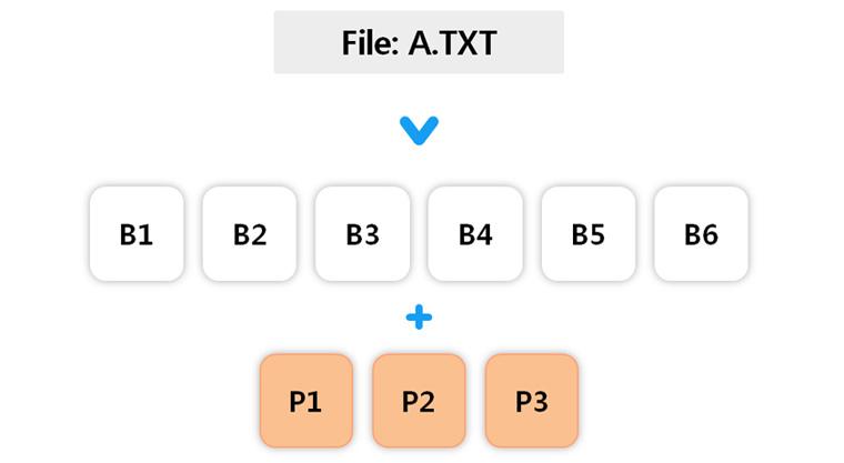 6개의 데이터블록과 3개의 Parity블록으로 나눠지는 (6, 3) Reed-Solomon