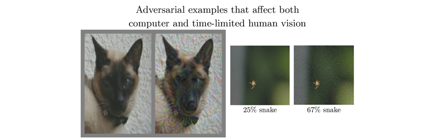 Adversarial examples that affect both computer and time-limited human vision
