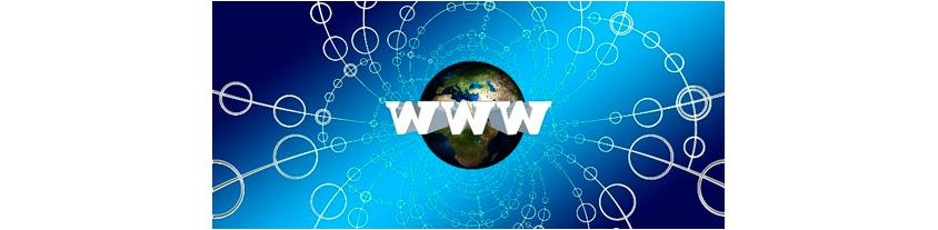WWW가 가운데 있고 지구모양이 있는 컨셉의 이미지