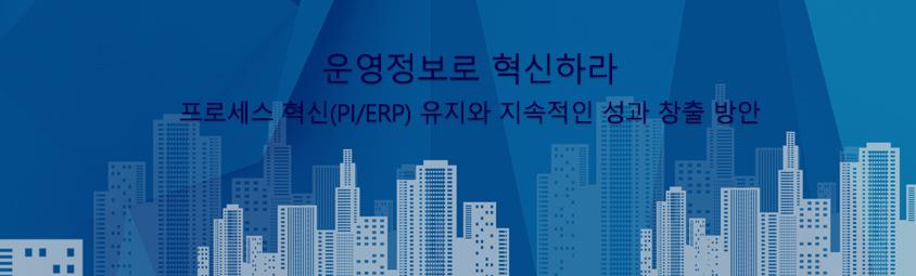 운영정보로 혁신하라 -  프로세스 혁신(PI/ERP) 유지와 지속적인 성과 창출 방안