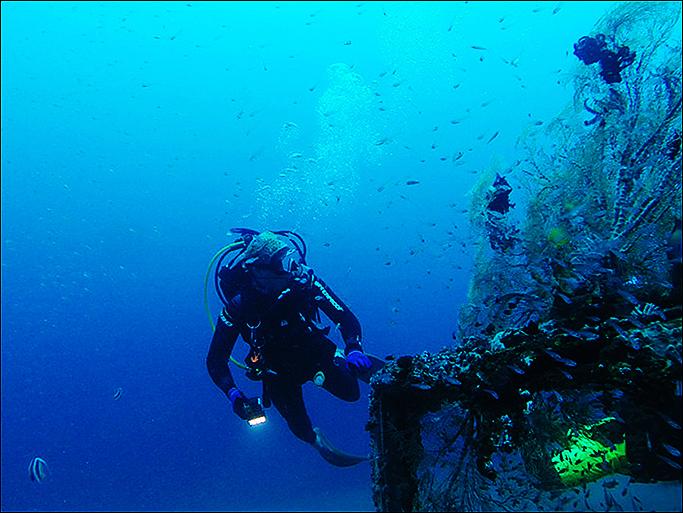 필리핀 남부 두마게티(Dumaguete) 바다에 가라앉은 난파선에 핀 산호의 모습