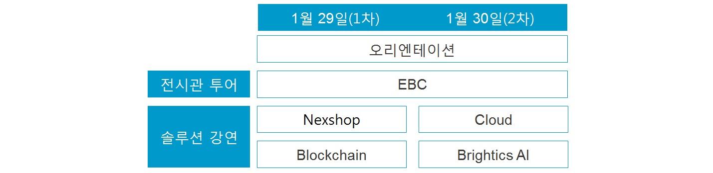 솔루션 멘토링 커리큘럼  1차 : 1월 29일, 오리엔테이션, EBC(전시관) 투어, 솔루션 강연( Nexshop, Blockchain) 2차 : 1월 30일, 오리엔테이션, EBC(전시관) 투어, 솔루션 강연(Cloud, Brightics AI)